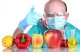 Що ми знаємо про ГМО?
